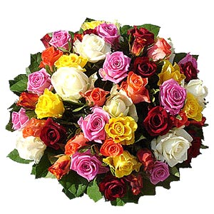 Mixed Roses By Mixing Rose Blooms Of Different Colors Purposefully You Can Create A Bouquet Emotions For Example Red And White