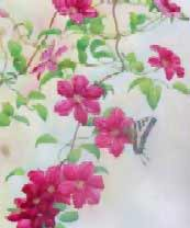 Flower Painting - Clematis