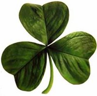 Image of Shamrock