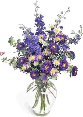 Wild Flowers for Friendship Day