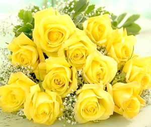 Image of Yellow Roses