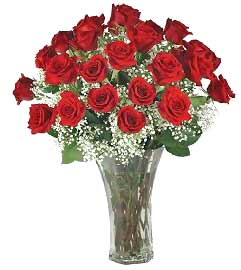image of Red roses1