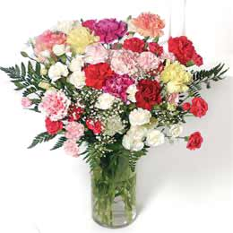 Image of Carnation Flower Bouquets